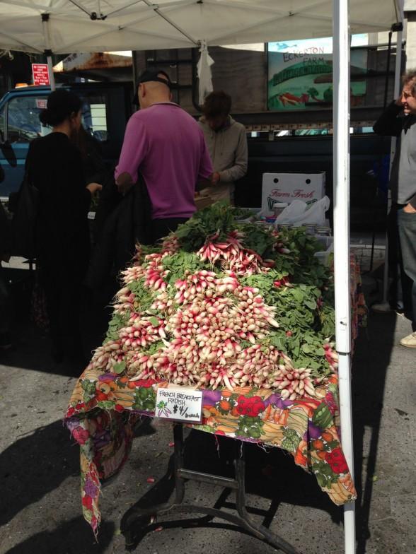 Beautiful radishes