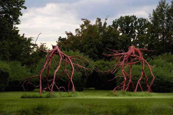 bronzeroots