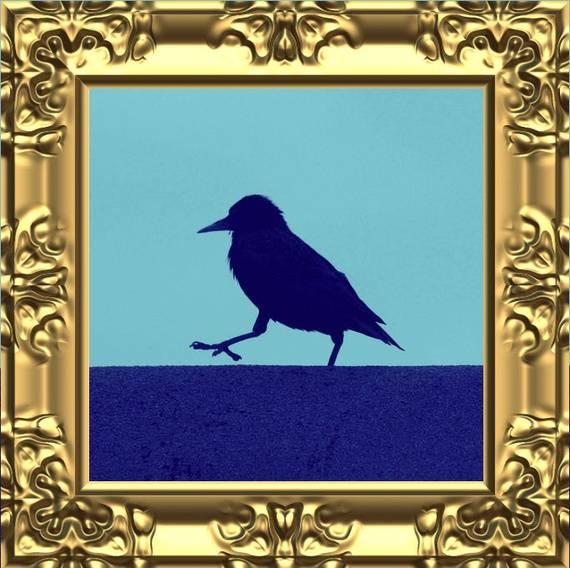 Bird in frame