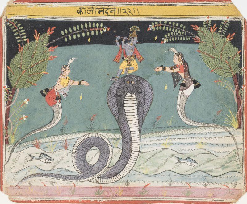 Krishna defeats the serpent Kaliya (Kaliya Damana), Malwa, India, ca. 1645. Opaque watercolor on paper. The San Diego Museum of Art; Edwin Binney 3rd Collection, 1990.952.