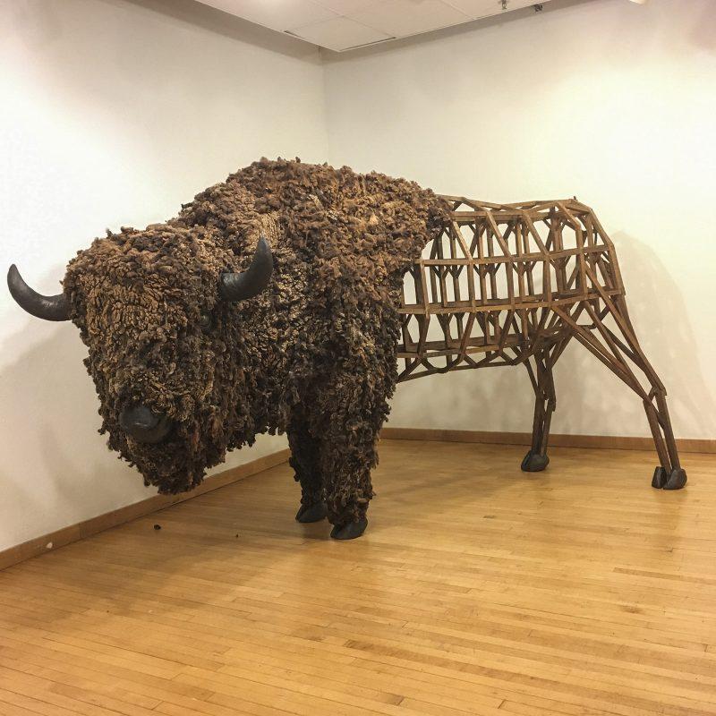"Emily White, ""American Bison/Prairie House"""