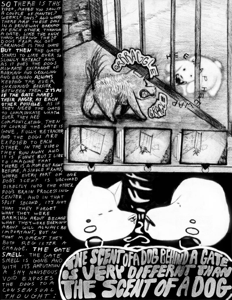 "Matt Kalasky, ""Gated,"" graphic essay"