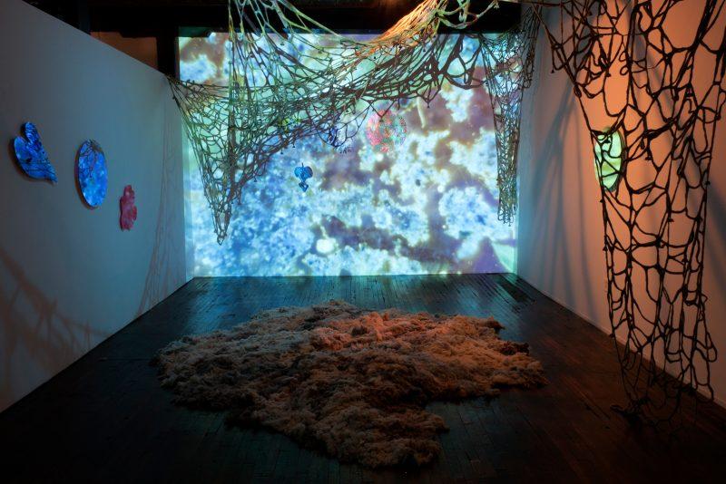"Installation view, Roxana Azar & GM Keaton, ""The crocus call."" photos courtesy of High Tide Gallery."