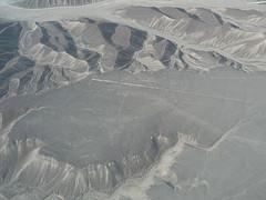 Nazca Lines hummingbird