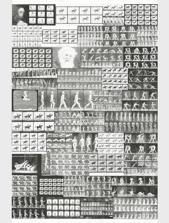 "Mia Rosenthal, ""Google Portrait of Eadward  Muybridge."""