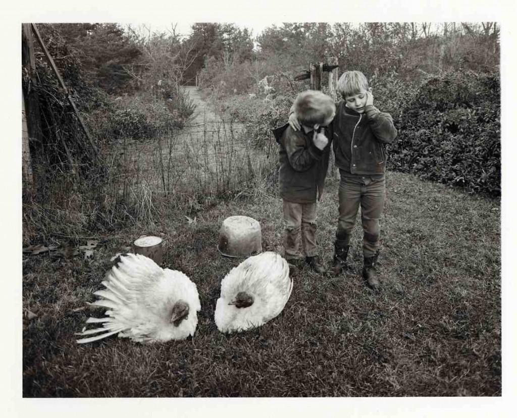 Emmet Gowin, Barry, Dwayne and Turkeys, Danville, Virginia, 1970, toned gelatin silver print. Courtesy of Swarthmore List Gallery