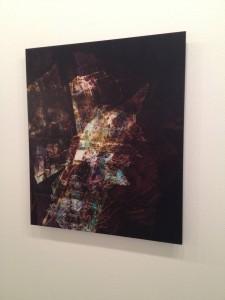 Katie Grinnan, Inner Weather, 2011. C-print mounted on Sintra.