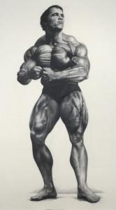 "Mark Stockton, ""Mr. Olympia 1974,"" graphite on paper."