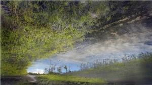 Celestun, 2012. Wax-diffused Pigment Print